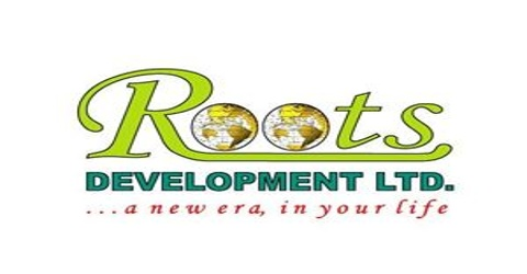 Marketing Activities of Roots Development Limited