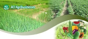 Commodity Branding Practices of Gypsar by ACI Fertilizer