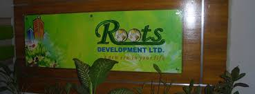 Report on Marketing Activities of Roots Development Limited
