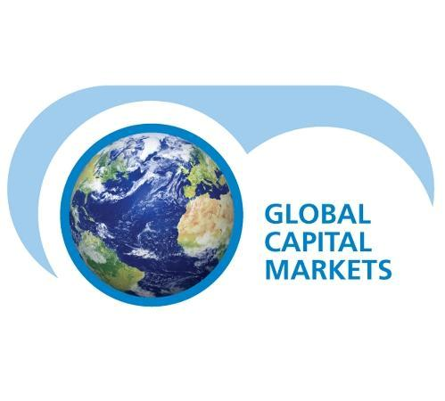 capital markets research papers Research focus from capital markets to non-capital market internal contractual incentives subhrendu rath , school of economics and finance, curtin university of technology, gpo box.
