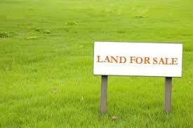Why Invest in Land?