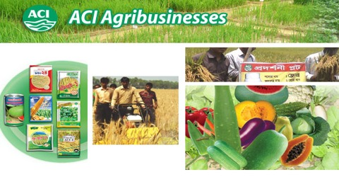 Marketing Practices of ACI Agribusinesses