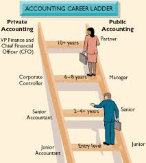Article on Introduction to a Career in Accounting