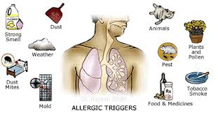 Real Causes of Asthma and Way to Cure it