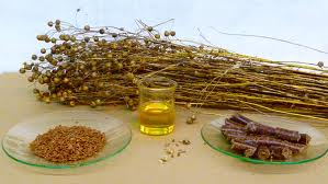 Assignment on Industrial Uses of Linseed Oil