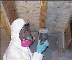 Advantages of Mold Remediation