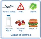 Herbal Remedies to Prevent Travelers Diarrhea