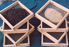 Assignment on What Is Seed Cleaning and Seed Dressing