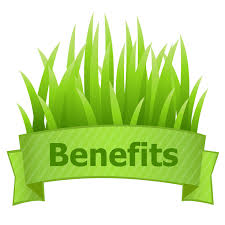 Article on How Sod Benefits the Environment