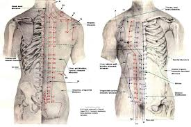 Get the Best Acupuncture Treatment