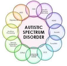 Most Common Autism Spectrum Disorder Symptoms