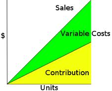 Effects of Contribution Margin on Decision Making