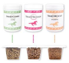 Article on Guide to Equine Supplements