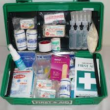 The Basic First Aid for Child Care Programs