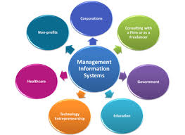 Limitations of Management Information Systems