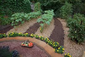 Importance of Topsoil, Fertilizer, and Pest-Control in Organic Gardening