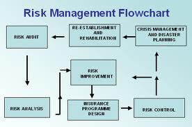 IT Risk Management Strategy