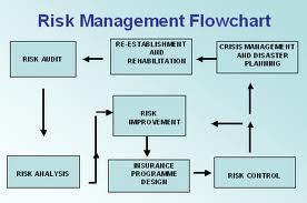 IT Risk Management Strategy