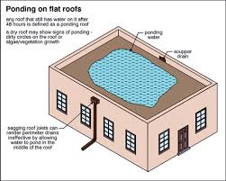 Flat Roof Construction Errors to Avoid