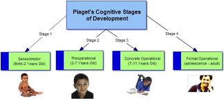 Cognitive Development Under Age of Twelve