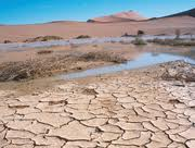 Desertification is the Process by which Land becomes Desert