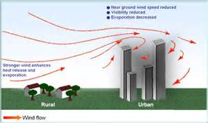 Discuss on the Effects of Wind