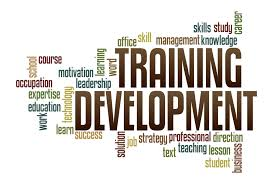 Term Paper on Employees Training and Development