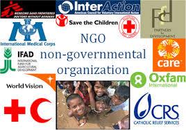 Define and Discuss on Non Governmental Organizations