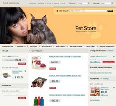 How To Set Up a Magento Store