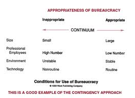 Discuss Pros and Cons of Bureaucracy