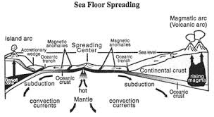Discuss on Sea Floor Evidence