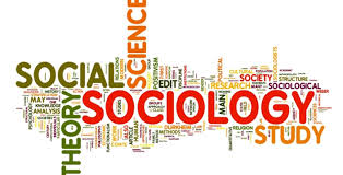 Sociology research paper instructions