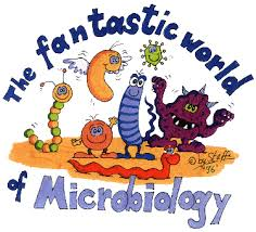 The Spectrum of Microbiology