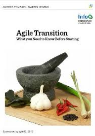 Why Agile Transitions Fail