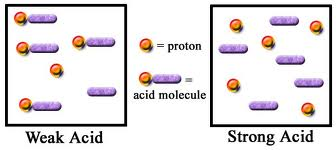 Discuss on Strong and Weak Acids