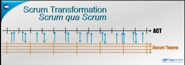 Six Steps To A Scrum Transformation