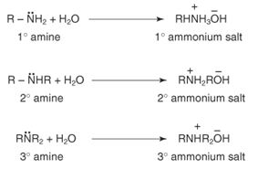Discuss on Introduction to Amines