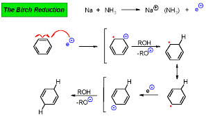Discuss on the Birch Reduction of Benzene