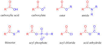 Define and Discuss on Carboxylic Acids