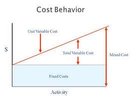 Define and Discuss on Cost Behavior