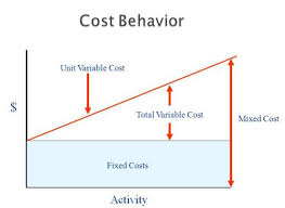 Define and Discuss on Cost Behavior