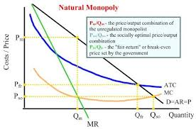 Define and Discuss on Costs of Monopoly