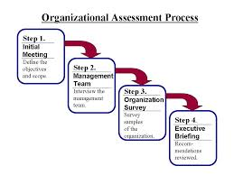 Discuss on Organizational Process