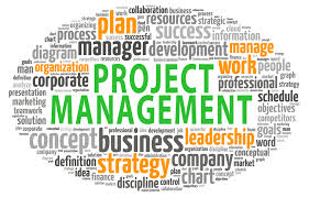 Presentation on Project Management
