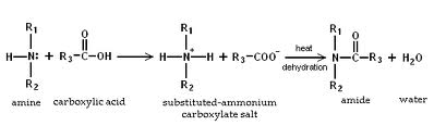 Discuss on Reactions of Amines