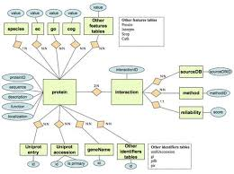 Presentation on Relational Database Design