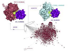 Presentation on Structural Bioinformatics