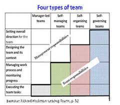 Discuss on Types of Teams