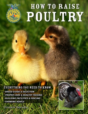 Make a Good Living by Raising Poultry