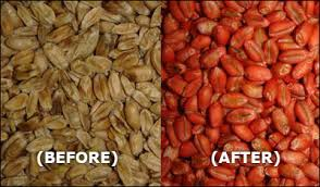 Analysis on Seed Cleaning and Seed Dressing